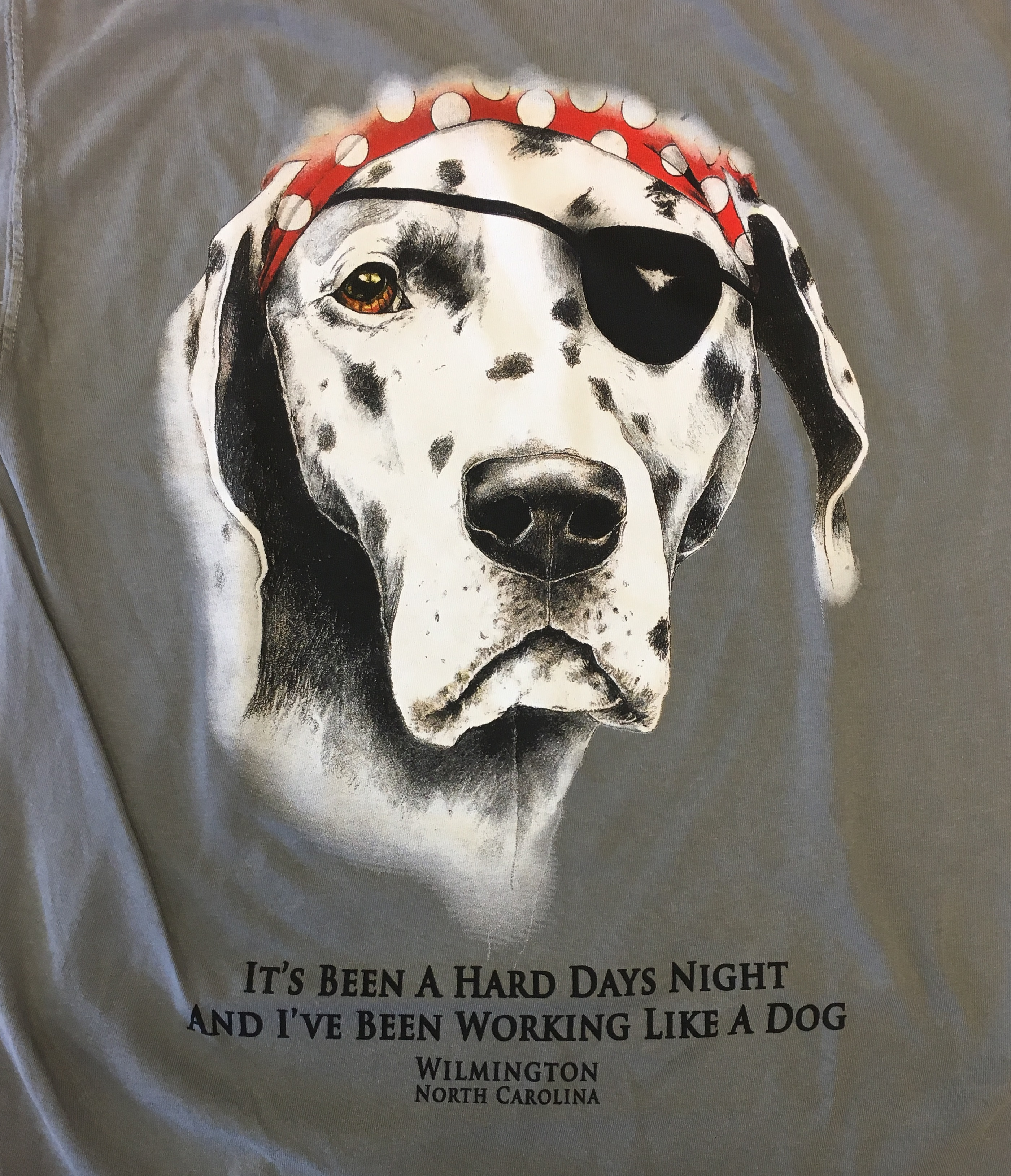 9fb340cd Sea Dog - Its Been a Hard Days Night - T shirt - Charcoal - Krazy Mikez